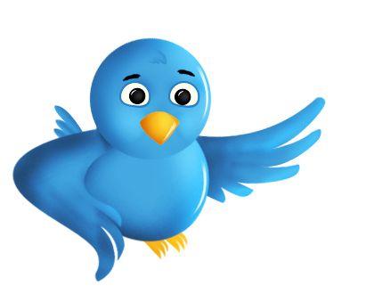 pajaro-twitter