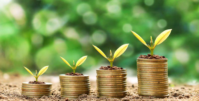 7 Ejemplos de negocios escalables de éxito