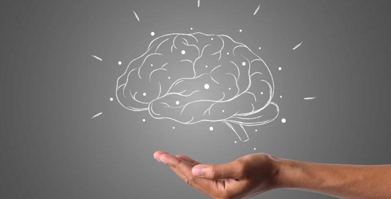Cómo entrenar tu cerebro para tomar mejores decisiones de negocio