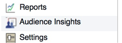Facebook Audience Insights2