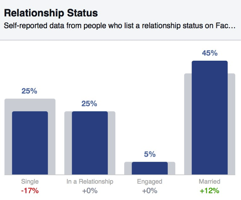Facebook-Audience-Insights5