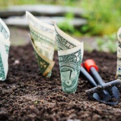 Planifica el crecimiento de tu negocio y empieza a ganar más dinero