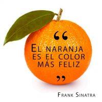 La filosofía de la Economía Naranja para generar empleo e ingresos - Juan Merodio