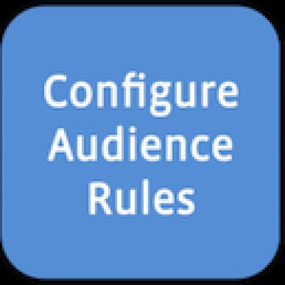 Web de empresa y Facebook Custom Audience para obtener más resultados