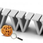 Qué son las Cookies y Cómo Las Empresas las Usan para Generar Perfiles de Usuarios
