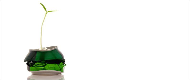 green-digital-marketing