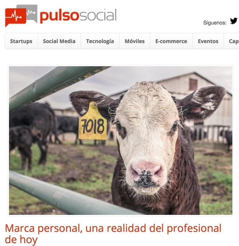 marca-personal-pulso-social